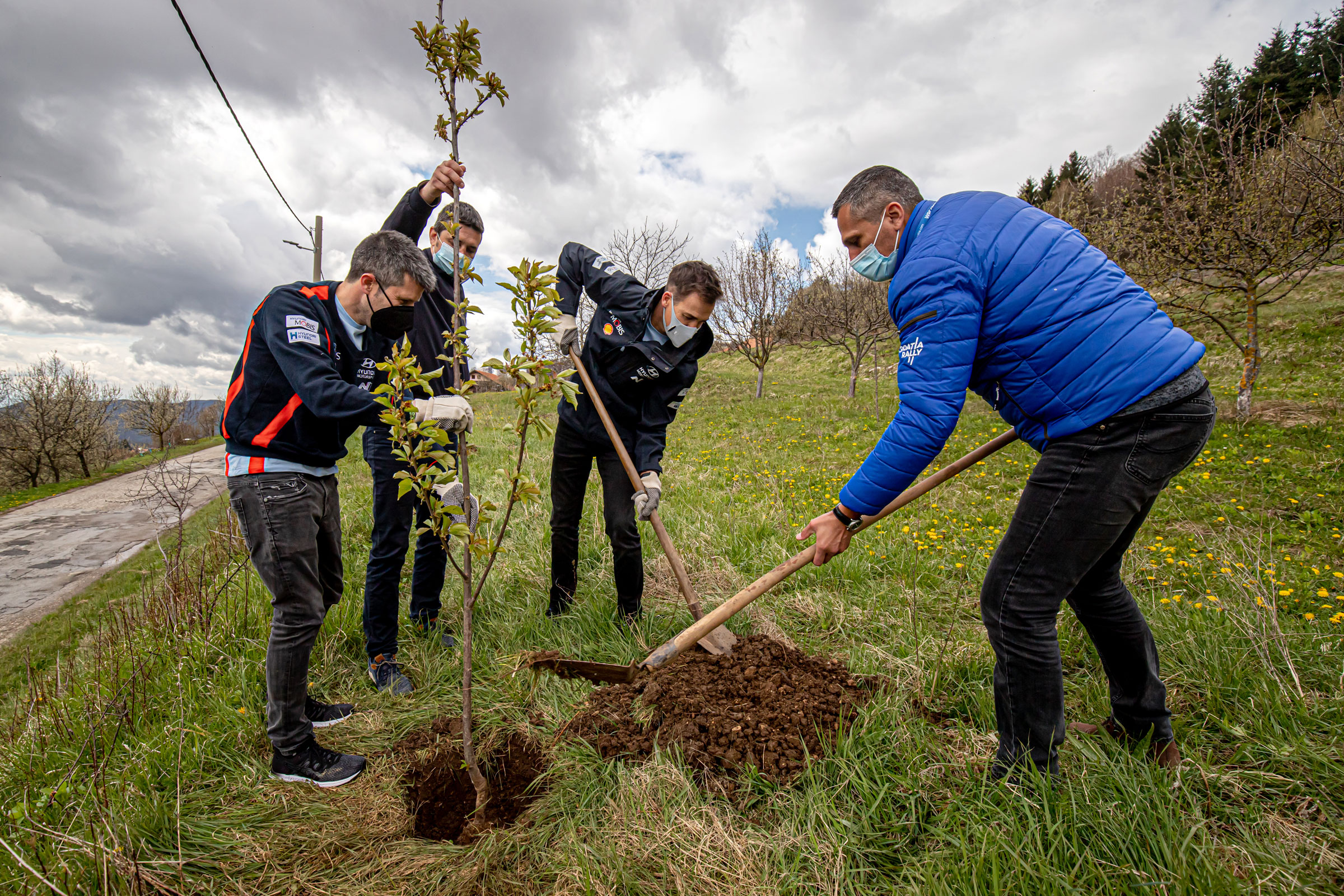 Leading rally drivers planted 11 cherry trees in Žumberak - 2